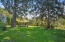 2370 E Pine St, Stayton, OR 97383 - 36_Pine36_mls