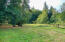 30670 Hwy 20, Blodgett, OR 97326 - Back of Property