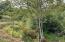 30670 Hwy 20, Blodgett, OR 97326 - Tum Tum River