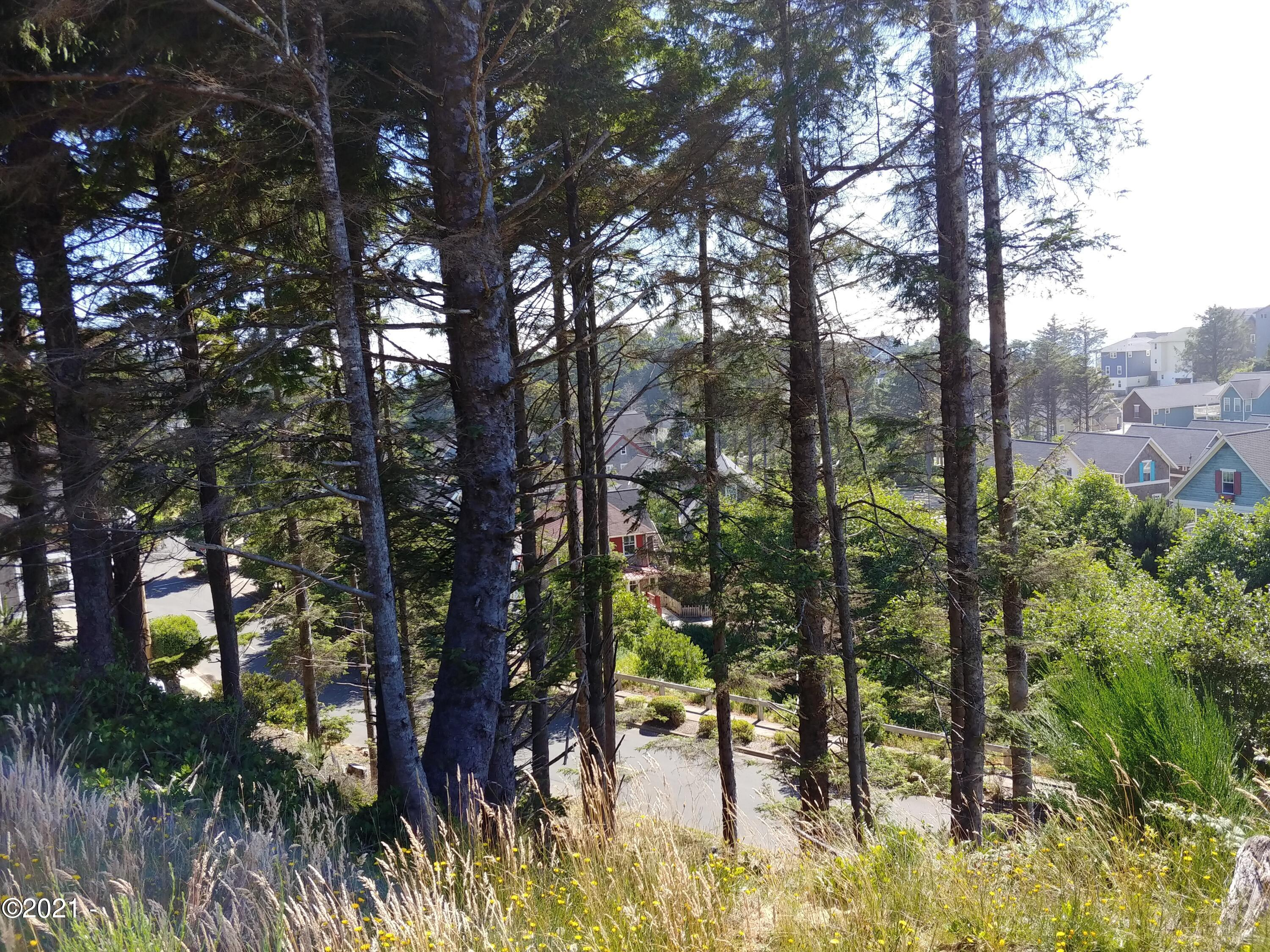 TL 5704 SW Coast Ave, Lincoln City, OR 97367 - View from Upper side of lot