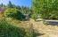 88046 Riverview Ave, Mapleton, OR 97453 - Yard and fruit trees