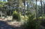 2309 NW Mokmak Lake Dr, Waldport, OR 97394 - IMG_4438