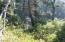 2309 NW Mokmak Lake Dr, Waldport, OR 97394 - IMG_4440