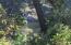 2309 NW Mokmak Lake Dr, Waldport, OR 97394 - IMG_4441