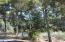2309 NW Mokmak Lake Dr, Waldport, OR 97394 - IMG_4452