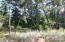 2309 NW Mokmak Lake Dr, Waldport, OR 97394 - IMG_4453