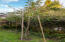 4194 NE C Ave, Neotsu, OR 97364 - Apple tree