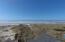 2206 NW Oceania Dr, Waldport, OR 97394 - beach trail