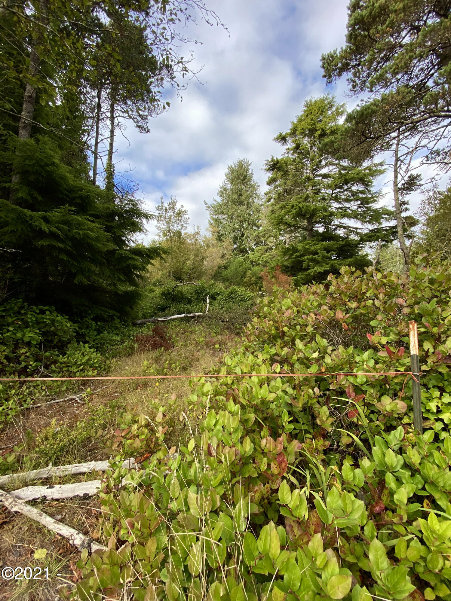TL 2600 NE Nevada St, Yachats, OR 97498 - Enter lot from Nevada St
