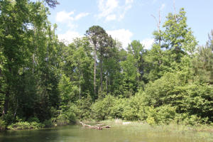 Lot 1 Ph 2 Amber Dr, Jacksons Gap, AL 36861