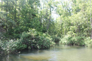 Lot 6 Ph 2 Amber Dr, Jacksons Gap, AL 36861