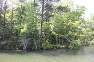 Lot 7 Ph 2 Amber Dr, Jacksons Gap, AL 36861