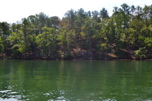 298 Peninsula Point (Lot 4), Dadeville, AL 36853