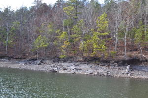 Lot 9 Phase 6, Dadeville, AL 36853