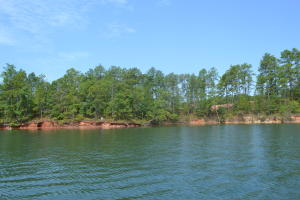 179 Peninsula Pt. (Lot 14), Dadeville, AL 36853