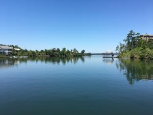 Large Lake Martin lot for sale with nearly 700 feet of water frontage.