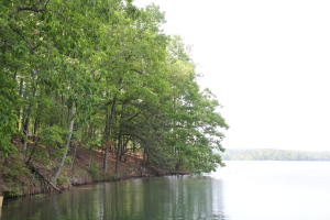Lot 126 N Fairwinds, Alexander City, AL 35010