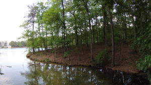Lot 127 N Fairwinds, Alexander City, AL 35010