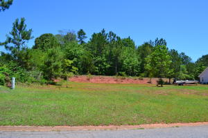 Lot 4 Landing Lane, Dadeville, AL 36853