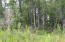 Lot 1 Creek Landing Road, Alexander City, AL 35010