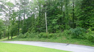Lot 21 Glenhaven Drive, Alexander City, AL 35010