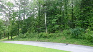 Lot 19 Glenhaven Drive, Alexander City, AL 35010