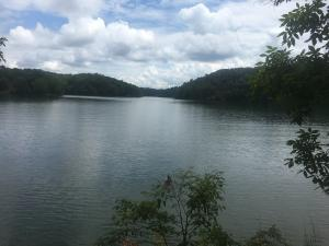 lot 58 Lakeview Point Drive, Alexander City, AL 35010