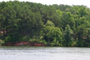 570 Water Oak Run (Lot 22), Jacksons Gap, AL 36861