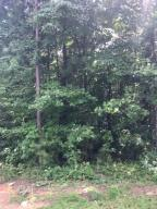 Lot 38 Thomas Ln, Alexander City, AL 35010