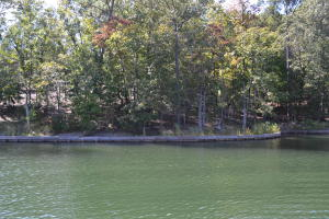 Lot 2 Phase 5 (Waters Edge), Dadeville, AL 36853