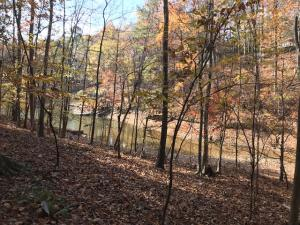 Lot 53 Raintree, Alexander City, AL 35010