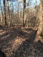 Lot 31 N Turkey Trot, Dadeville, AL 36853