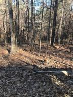 Lot 32 N Turkey Trot, Dadeville, AL 36853