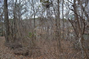 Lot 10 Sandy Creek Estates, Dadeville, AL 36853