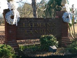 Lot 38 Landing, Dadeville, AL 36853