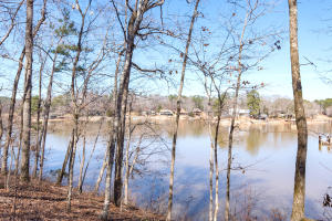 Lovely sloping lot with great water depth located close to Hwy 280, Golf Course and Auburn.