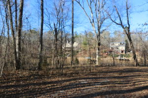 Lot 1 Waverly Point S/D, Jacksons Gap, AL 36801