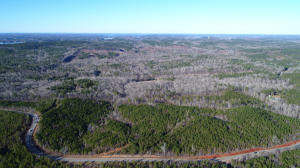 48 Acres on Hwy 50, Dadeville, AL 36853