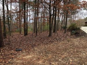 Lot 5 Fairway Ridge Rd, Dadeville, AL 36853