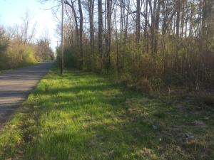 Lot #1 Lincoln Heights St., Alexander City, AL 35010