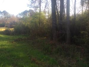 Lot #4 Lincoln Heights St, Alexander City, AL 35010
