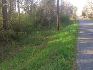 Lot #5 Lincoln Heights St, Alexander City, AL 35010
