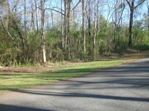Clay Drive, Dadeville, AL 36853