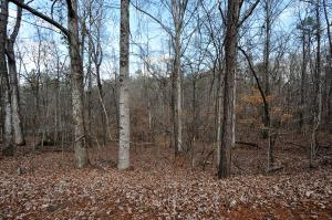 Lot 21 Big Horn Lane, Dadeville, AL 36853