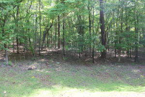 Lot 28 Lakewood Lane, Dadeville, AL 36853