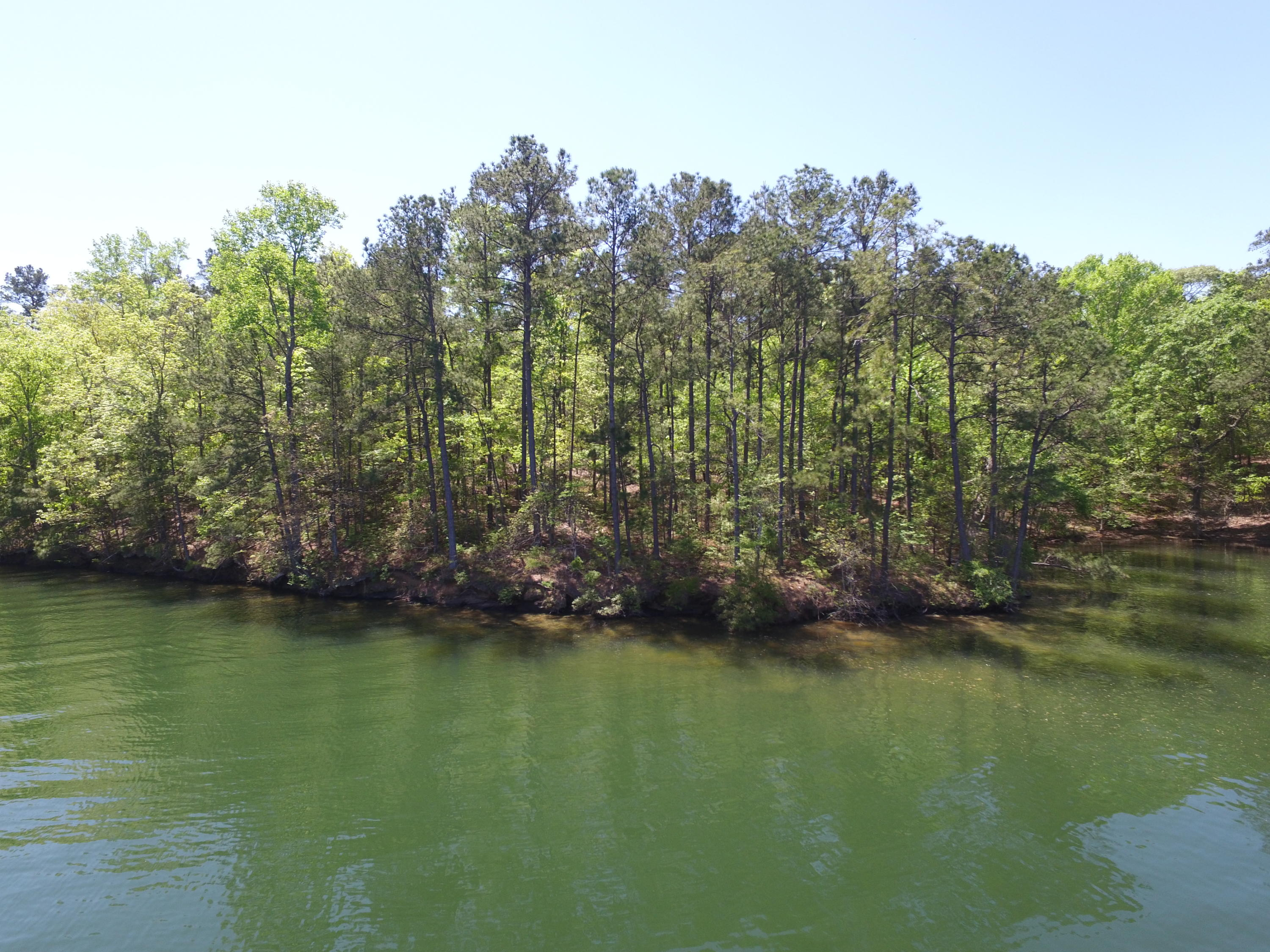Search Waterfront Lots – Fuller Realty Lake Martin Alabama