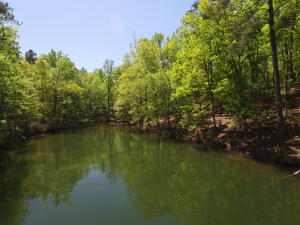 Lot 3 Kennebec, Dadeville, AL 36853