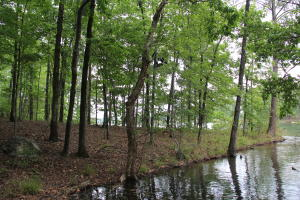 Lot 36 Kennebec, Dadeville, AL 36853