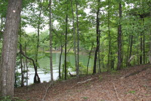 Lot 37 Kennebec, Dadeville, AL 36853