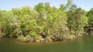 Lot 6 Kennebec, Dadeville, AL 36853